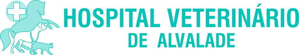 Logo HVdA